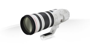 Canon EF 200-400mm f/4L IS USM Extender 1.4x