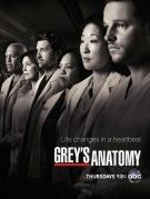 ABC Grey's Anatomy - Sesong 9