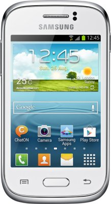 Samsung Galaxy Young S6310P
