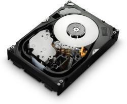 Hitachi UltraStar 15K600 600 GB SAS