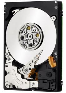 Fujitsu 6G 300GB SAS Hot Plug 15K