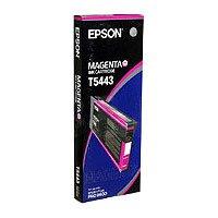 Epson T5443 Magenta stor