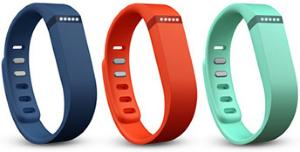 FitBit Flex Accessory Band