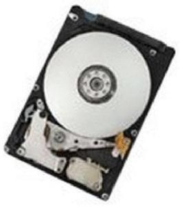 HGST TravelStar 500GB