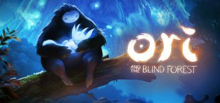 Ori And The Blind Forest til PC