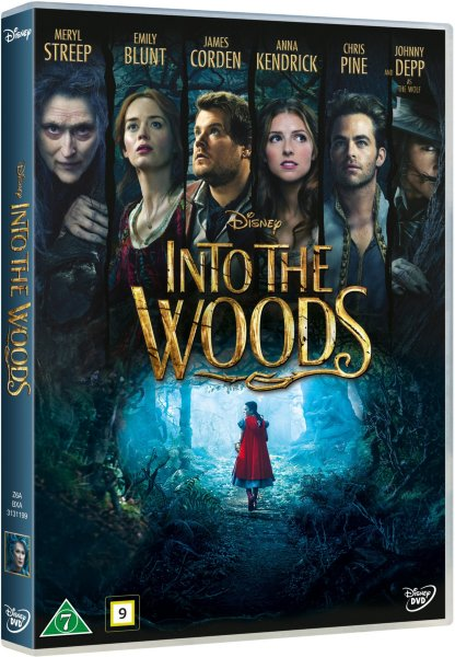 Walt Disney Entertainment Into The Woods