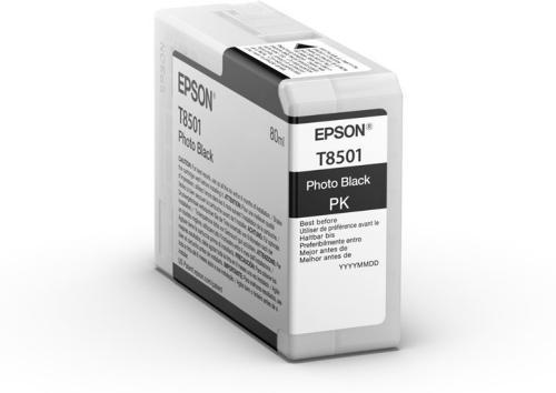 Epson T850100 Sort