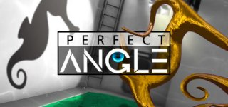 PERFECT ANGLE: The puzzle game based on optical illusions til PC