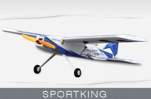 TechOne Sport King ARTF
