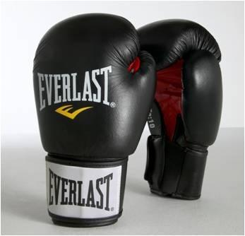 Everlast Ergo Foam 12oz Leather Boksehansker