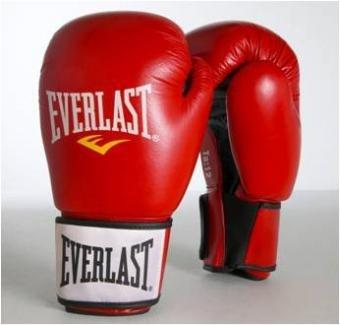 Everlast Ergo Foam 14oz Leather Boksehansker