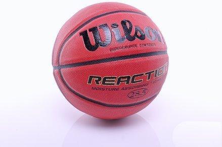 Wilson Reaction Baskeball (Str. 6)
