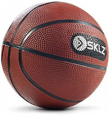 Wilson SKLZ Pro Mini Hoop Ball