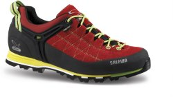 Salewa MTN Trainer GTX Low cut (Herre)
