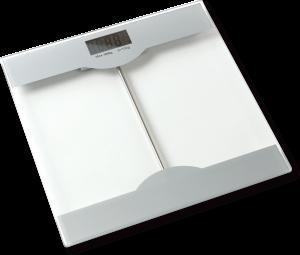 Jenkinsbird Body Scale