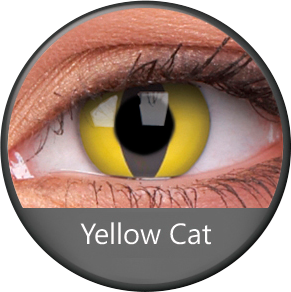 Phantasee Yellow Cat