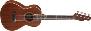 Fender MinoAka