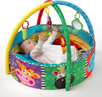 Playgro Ball Playnest Babygym