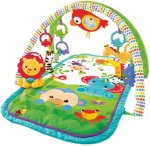 Fisher-Price 3 in 1 Babygym