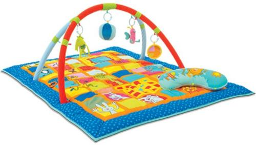 Taf Toys 3 in 1 Curiosity Gym