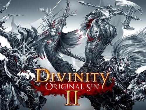 Divinity: Original Sin II til PC