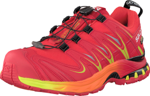 Salomon XA Pro 3D GTX 10-YR LTD Radiant Red (Herre)