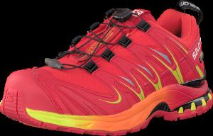 Salomon XA Pro 3D GTX 10-YR LTD Radiant Red (Herre)