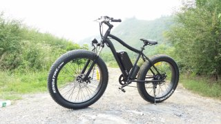EAZbike Fatbike El-sykkel 250W (Herre)