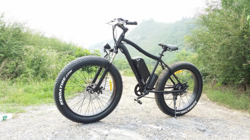 Fatbike El-sykkel 250W (Herre)