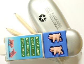 Kast grisene