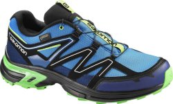 Salomon Wings Access GTX (Herre)