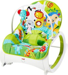 Fisher-Price Newborn To Toddler