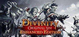 Divinity: Original Sin Enhanced Edition til PC