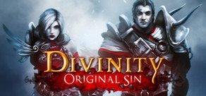 Divinity: Original Sin til PC