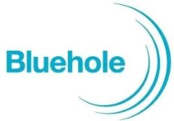 Bluehole, Inc. logo