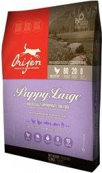 Orijen Dog Puppy Large 6 kg