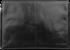 """DBramante1928 Skagen 13"""""""