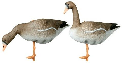 Hunter Grey Goose