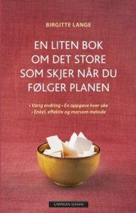 Birgitte Lange En liten bok om det store som skjer når du følger planen