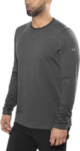 Arc'teryx Dallen Fleecegenser (Herre)