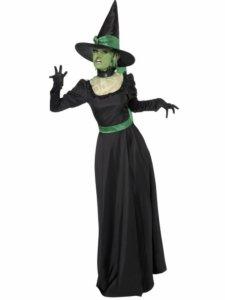 Heks Kostyme Grønn