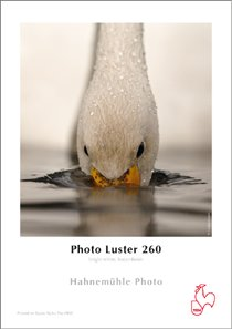 """Hahnemühle Photo Luster 260 g/m² - 60"""" x 30 meter"""