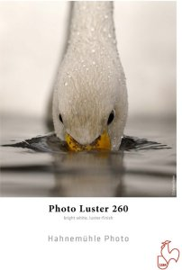 """Hahnemühle Photo Luster 260 gr 24"""" x 30"""