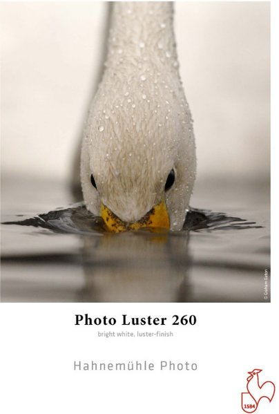 "Hahnemühle Photo Luster 260 gr 24"" x 30"