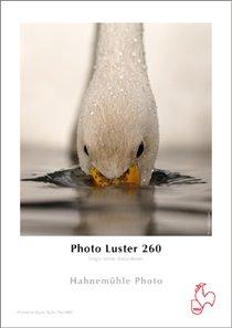 Photo Luster 260 g/m² - A3+ 25 Stk.