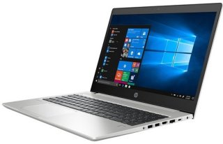 HP ProBook 450 G6 (6MS70EA)