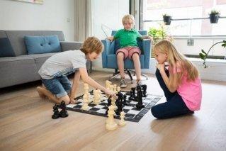 BuitenSpeel Sjakkspill Chess XL 262-GA229