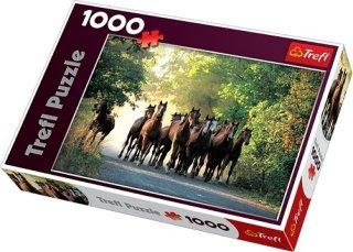 Trefl Puslespill 1000 Biter Thoroughbred Stallions