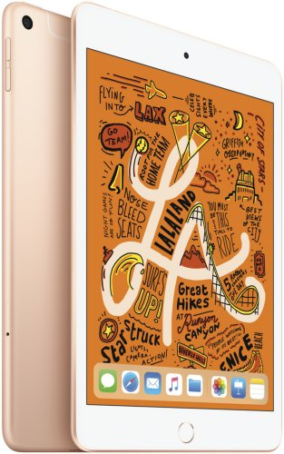 Apple iPad Mini 256GB 4G (2019)