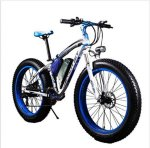 RichBit Fatbike Cruiser